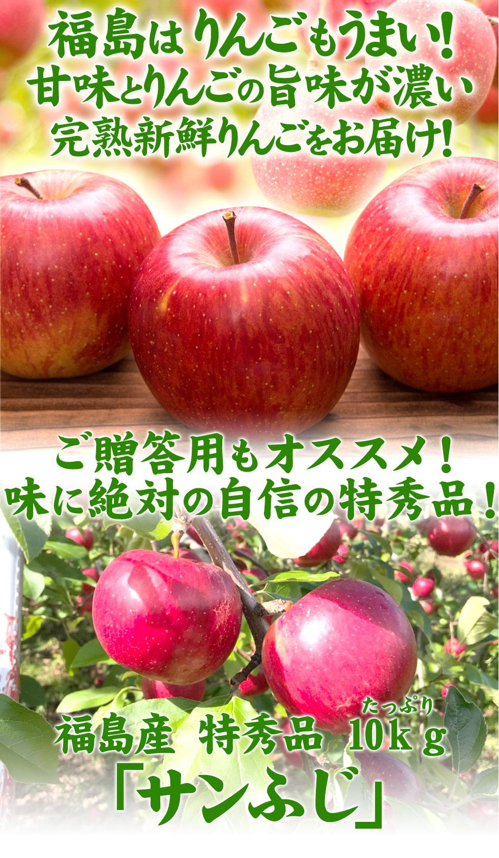 福島産 早生ふじ・サンふじ