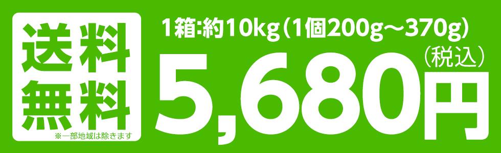 福島産 早生ふじ・サンふじ 10kg