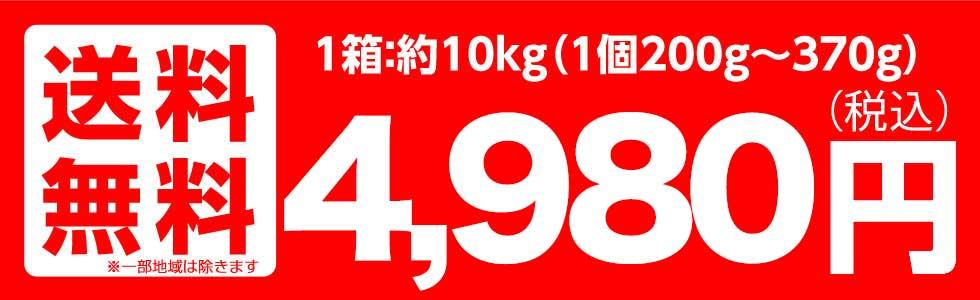 山形産 早生ふじ・サンふじ 10kg
