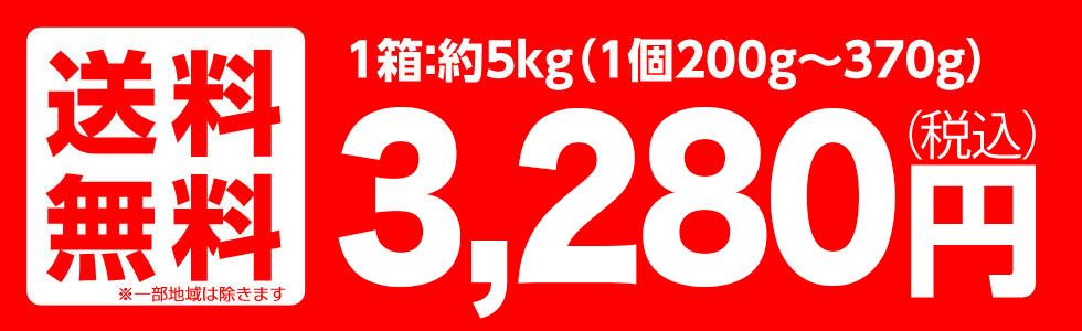 山形産 早生ふじ・サンふじ 5kg