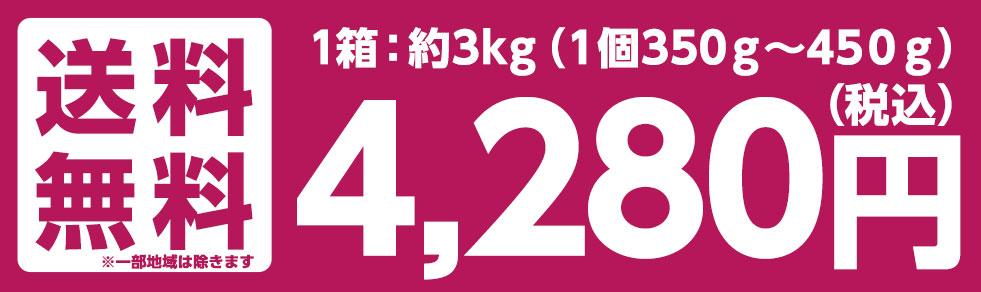 送料無料 3,200円