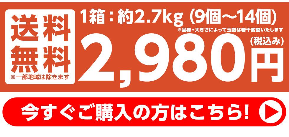 約3kg(8個〜12個) 送料無料 2680円