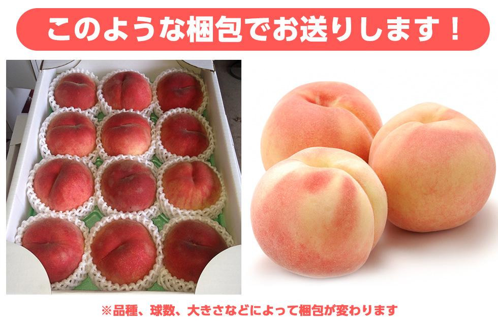 このような梱包でお送りします!※※品種、球数、大きさなどによって梱包が変わります