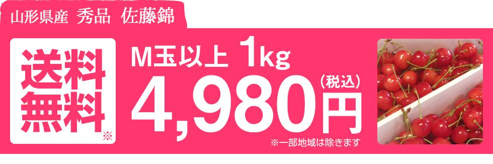 送料無料 3,980円