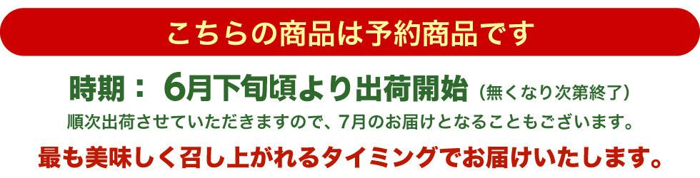 6月下旬〜7月上旬にお届け(なくなり次第終了)