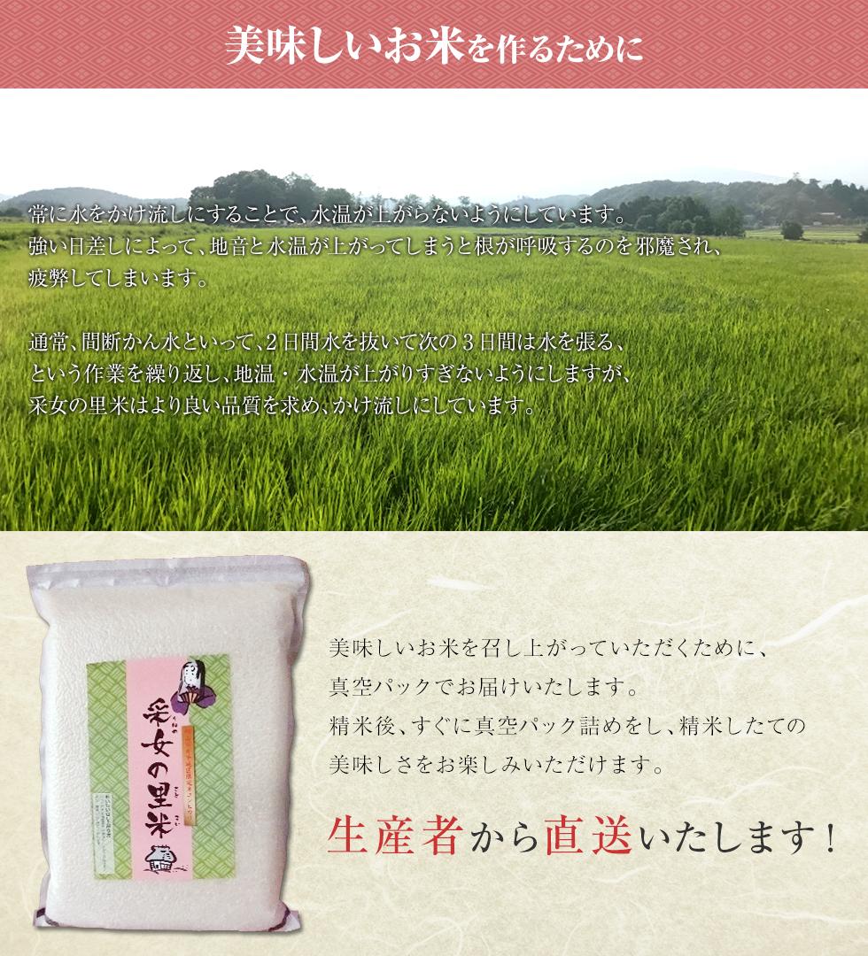 美味しいお米を作るために